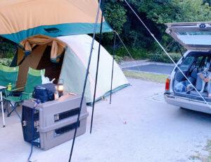 テント サイト